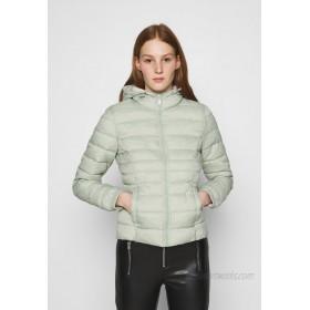 ONLY ONLNEWTAHOE CONTRAST HOOD JACKET  Light jacket desert sage/pumice stone/mint